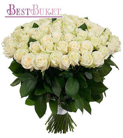 Доставка цветов в смоленской области эрика цветы купить